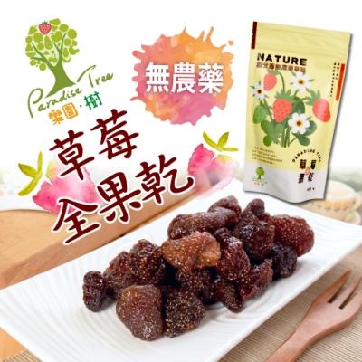 樂園樹‧無農藥草莓全果乾(100g/包,共2包)+贈法式水果軟糖一包(隨機口味)