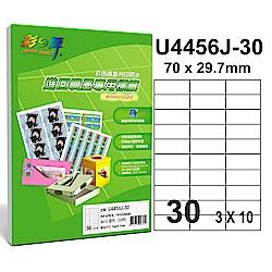彩之舞【U4456J-30】A4 30格(3x10) 進口噴墨專用標籤紙 120張