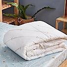 戀家小舖 / 雙人棉被  可機洗防臭四季被  耐用抗菌可機洗  台灣製