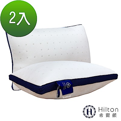 Hilton希爾頓五星級御用6D透氣舒柔乳膠枕2入