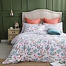 MONTAGUT-埃斯特莊園-100%純棉-兩用被床包組 (加大)