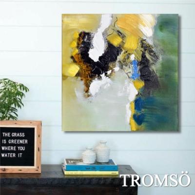 TROMSO百勝藝術立體抽象油畫-W417