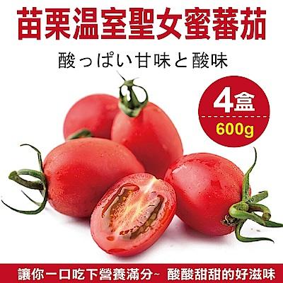 【天天果園】苗栗溫室聖女蜜蕃茄(每盒約600g) x4盒