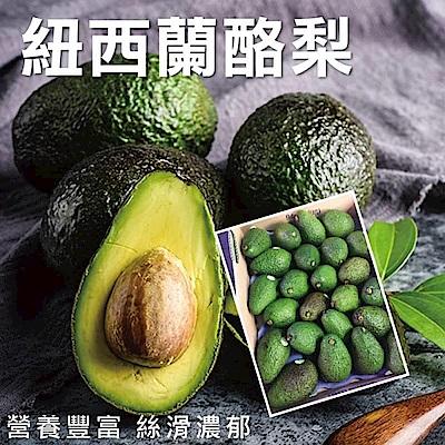 【天天果園】紐西蘭酪梨 x2.5kg (約12顆)