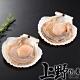 【上野物產】半殼扇貝(500g土10%/7-8個/包) x10包 product thumbnail 2