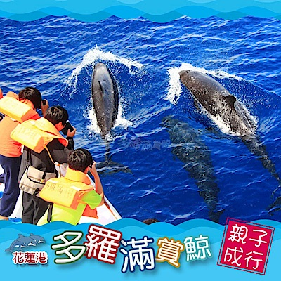 (花蓮)多羅滿 賞鯨親子券(1大1小)