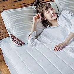 戀家小舖 / 枕頭  皇家御用枕-兩入組  3D立體結構透氣  台灣製