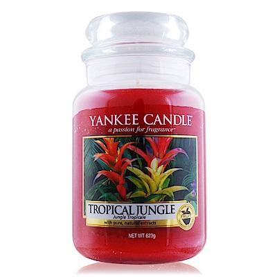 YANKEE CANDLE 香氛蠟燭-熱帶叢林 Tropical Jungle 623g