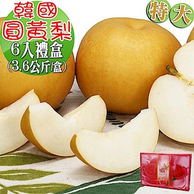 愛蜜果 韓國圓黃梨特大6入禮盒(約3.6公斤/盒)