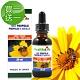 【買一送一】加力活蜂膠滴液Bee Propolis(30毫升/瓶) product thumbnail 1