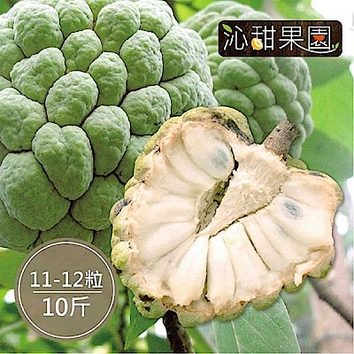 沁甜果園SSN 台東大目釋迦(11-12顆裝/10台斤)