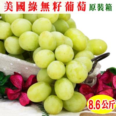 愛蜜果 美國加州綠無籽葡萄原裝箱~約8.6公斤/箱(冷藏配送)