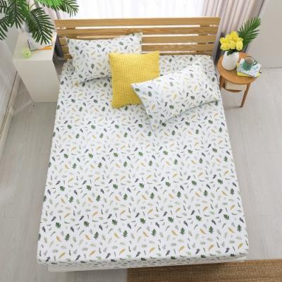 鴻宇 100%精梳棉 小葉子 雙人床包枕套三件組