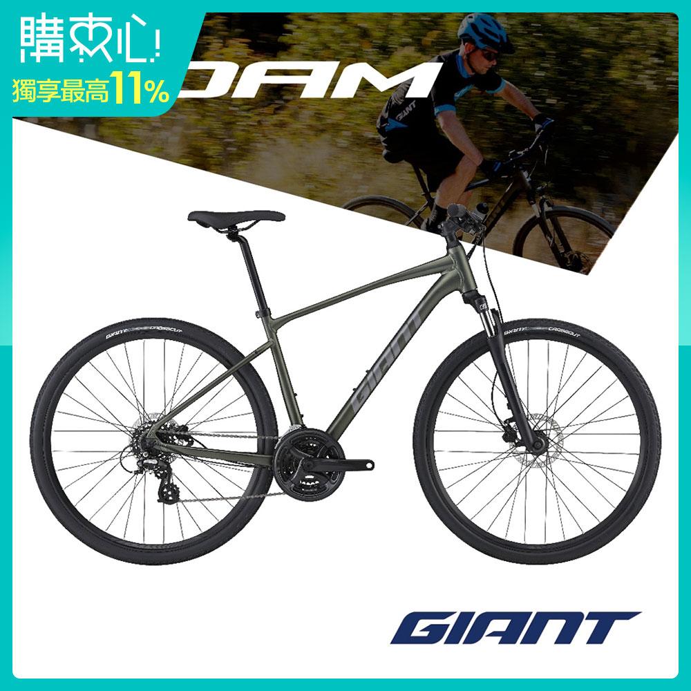 Giant ROAM 4 DISC 城市運動自行車