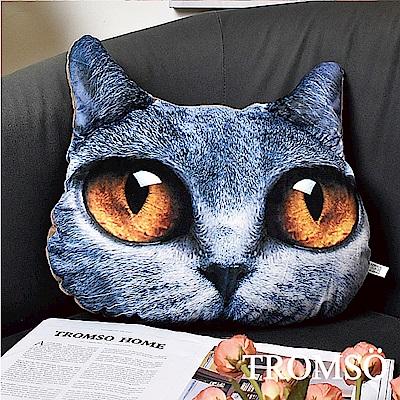 TROMSO 大眼貓星人抱枕-C402貴族灰貓