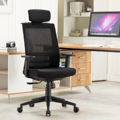 E-home Passion高背半網人體工學電腦椅 黑