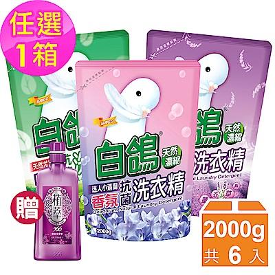 (加碼送植萃566洗髮露)白鴿天然濃縮抗菌洗衣精-補充包2000gx6包,3款可選