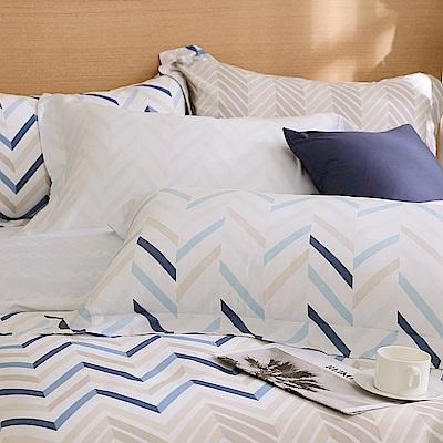 鴻宇 歐式壓框薄枕套2入 天絲300織 奧斯卡 台灣製