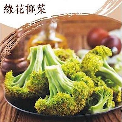 北灣 IQF鮮凍綠花椰菜(500g/包)