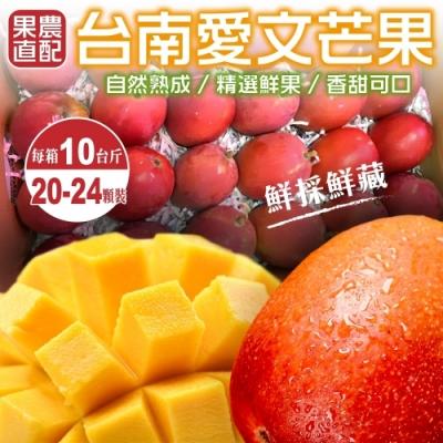 【天天果園】正宗台南愛文芒果10斤(20-24入)