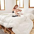義大利La Belle 日本原棉發熱羊毛被 --特大