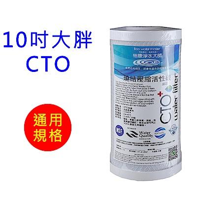 怡康 10吋大胖標準CTO燒結壓縮活性碳濾心1支