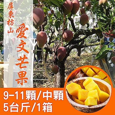 【產地直送】屏東枋山愛文芒果5台斤X1箱(9-11顆/箱)