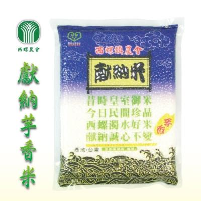 【西螺農會】獻納芋香米 (2kg / 包 x2包)
