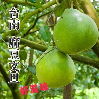 台南麻豆文旦 10台斤裝