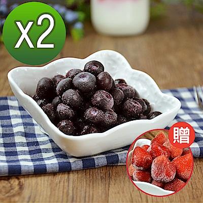【幸美生技】美國原裝鮮凍藍莓1kg+1kg超值特惠組(加贈草莓1公斤)