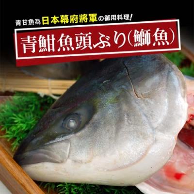 築地一番鮮-日本極鮮青魽魚頭12片(350g~400g/片)免運組