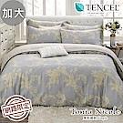 Tonia Nicole東妮寢飾 漫遊巴洛克100%萊賽爾天絲兩用被床包組(加大)