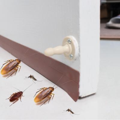 樂嫚妮 DIY 防蟲門縫/門窗密封條/5米- 棕色