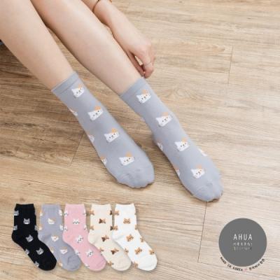阿華有事嗎 韓國襪子 滿版貓咪中筒襪  韓妞必備長襪 正韓百搭卡通襪