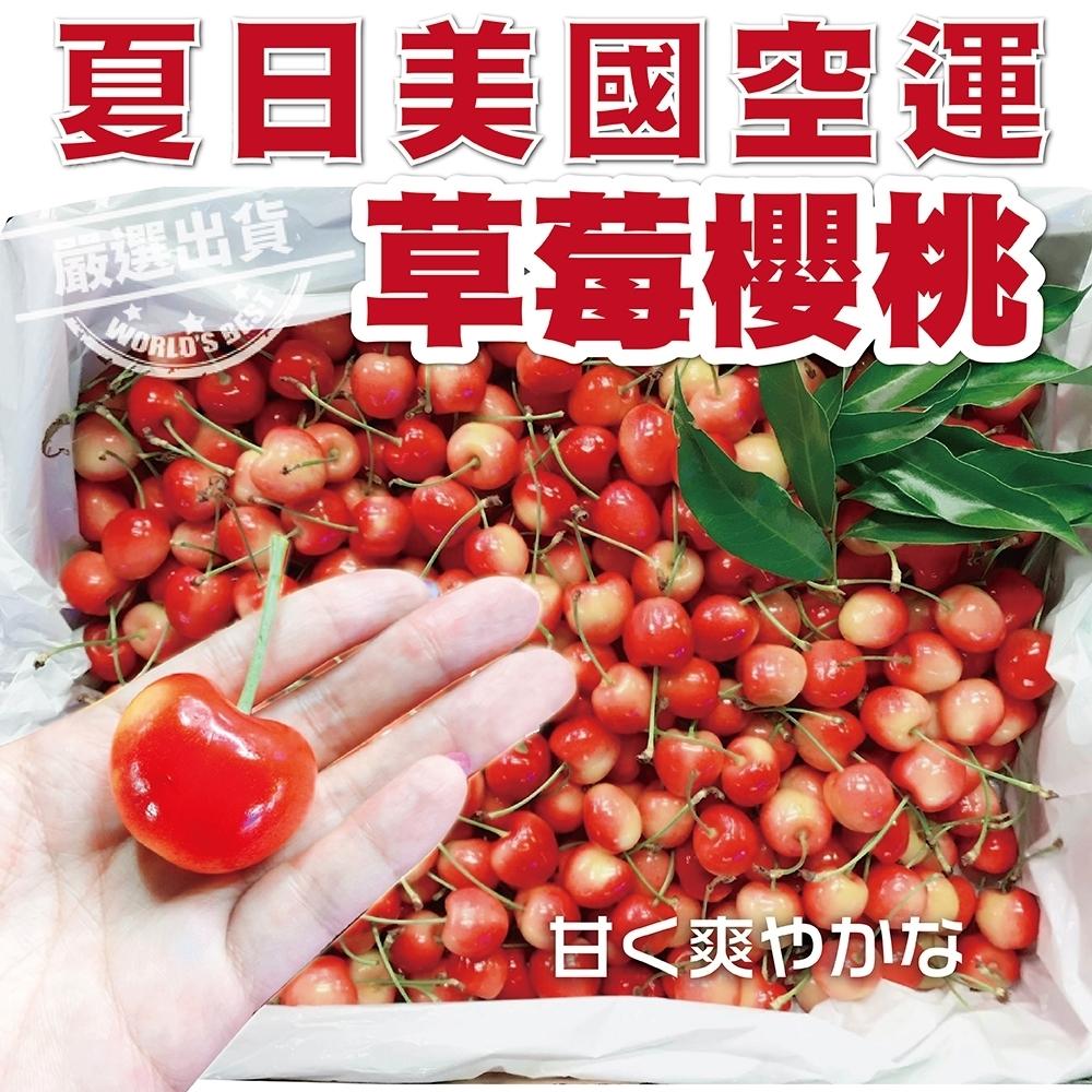 【天天果園】美國草莓白櫻桃9.5R禮盒1kg