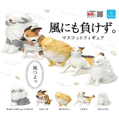 全套5款 日本正版 才不會輸給風的公仔們 扭蛋 轉蛋 強風吹動物 頂住強風的貓狗 博美犬 - 373385
