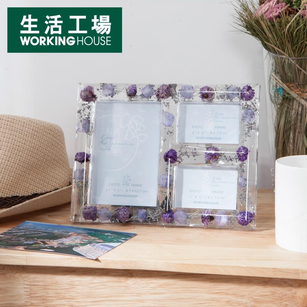 【品牌週加碼 專區8折-生活工場】若羽紛花柔紫壓克力三格相框