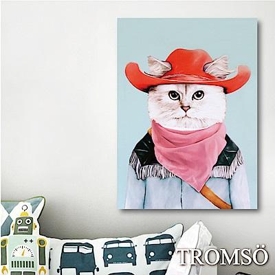 TROMSO時尚無框畫-牛仔貓咪