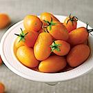 夢想蕃茄園 橙蜜香小蕃茄(3000g/盒)(2盒)