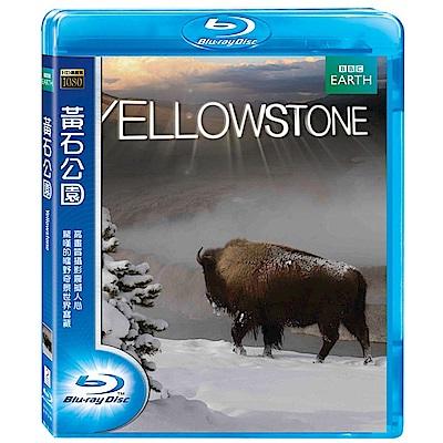 BBC 黃石公園 Yellowstone. 藍光 BD
