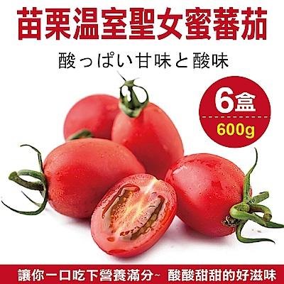 【天天果園】苗栗溫室聖女蜜蕃茄(每盒約600g) x6盒