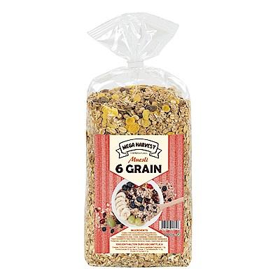 Mega Harvest 什錦穀片(1kg)x2袋裝