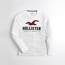Hollister HCO  長袖 T恤 白 1096