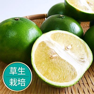 【果物配-任699免運】綠寶石葡萄柚500g.友善農法(1~2顆)