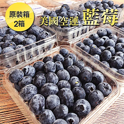 【愛上水果】美國空運藍莓原裝箱12盒*2箱(約125g/盒)