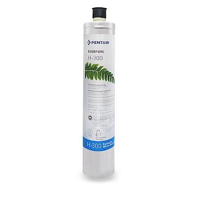 水蘋果公司貨 EVERPURE H300 淨水濾心