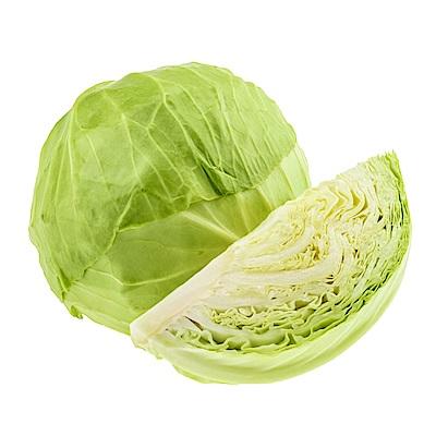 任選滿額590免運 信心有機認證蔬菜-高麗菜(半顆/份)