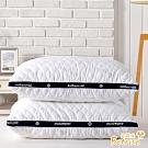 Betrise五星等級 德國銀離子防蹣抗菌3D立體可水洗舒眠枕 超值買一送一