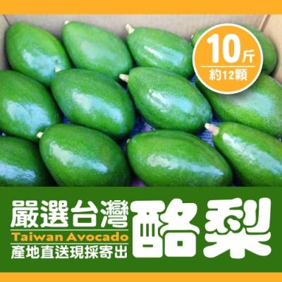 嚴選台灣酪梨 2箱 (10斤-約12顆/箱)
