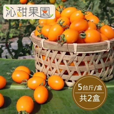沁甜果園SSN‧錦珠番茄5斤/盒,(共2盒)
